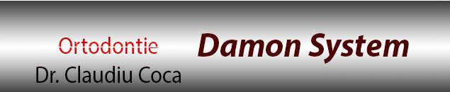 Damon System